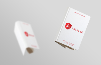 Book with guidelines on Angular